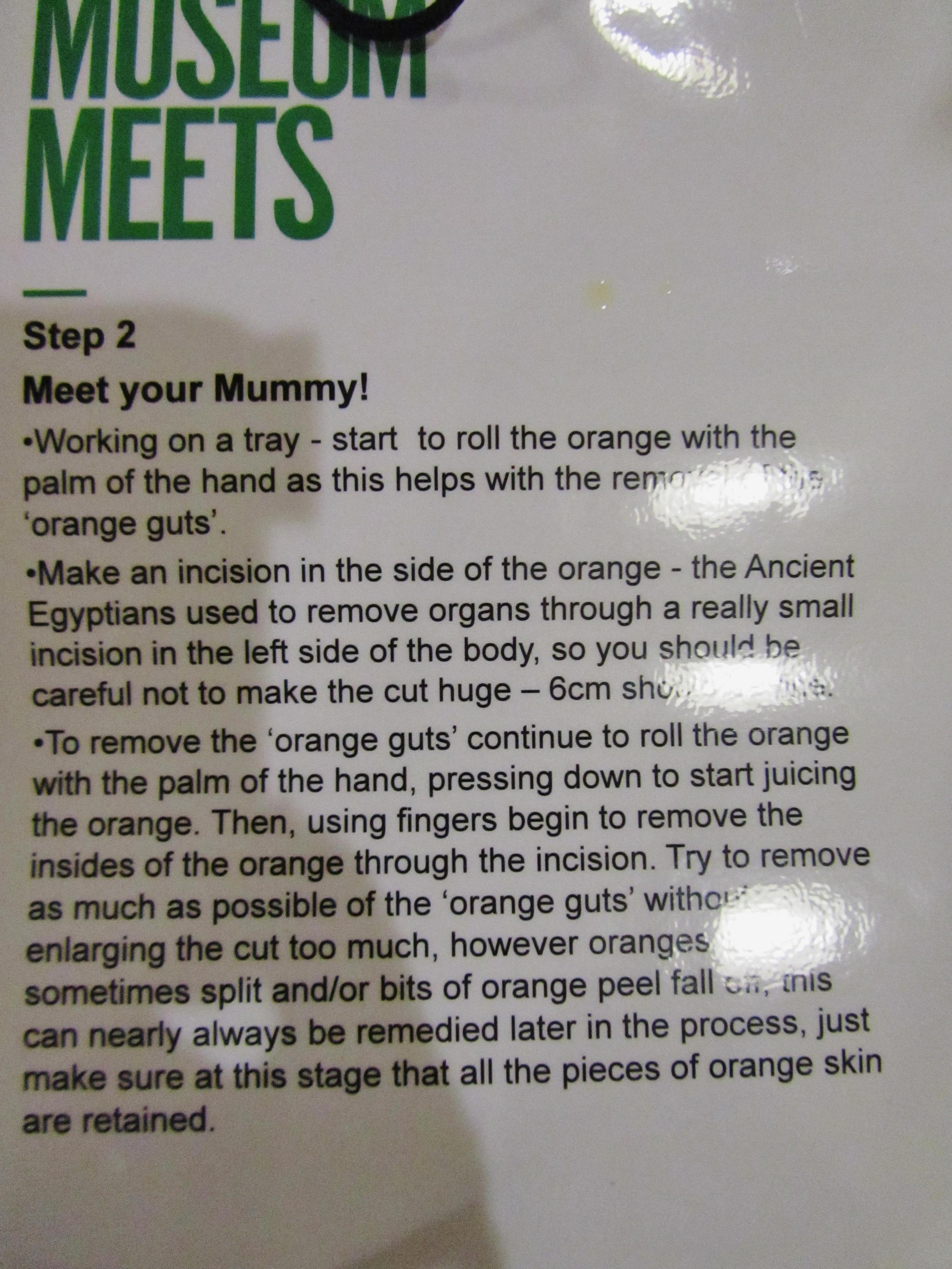after hours step 2 manchester museum mummifying orange meet your mummy.JPG