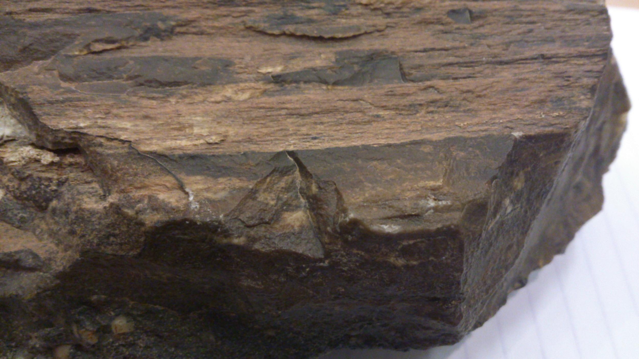 petrified wood desert varnish jade mellor.jpg