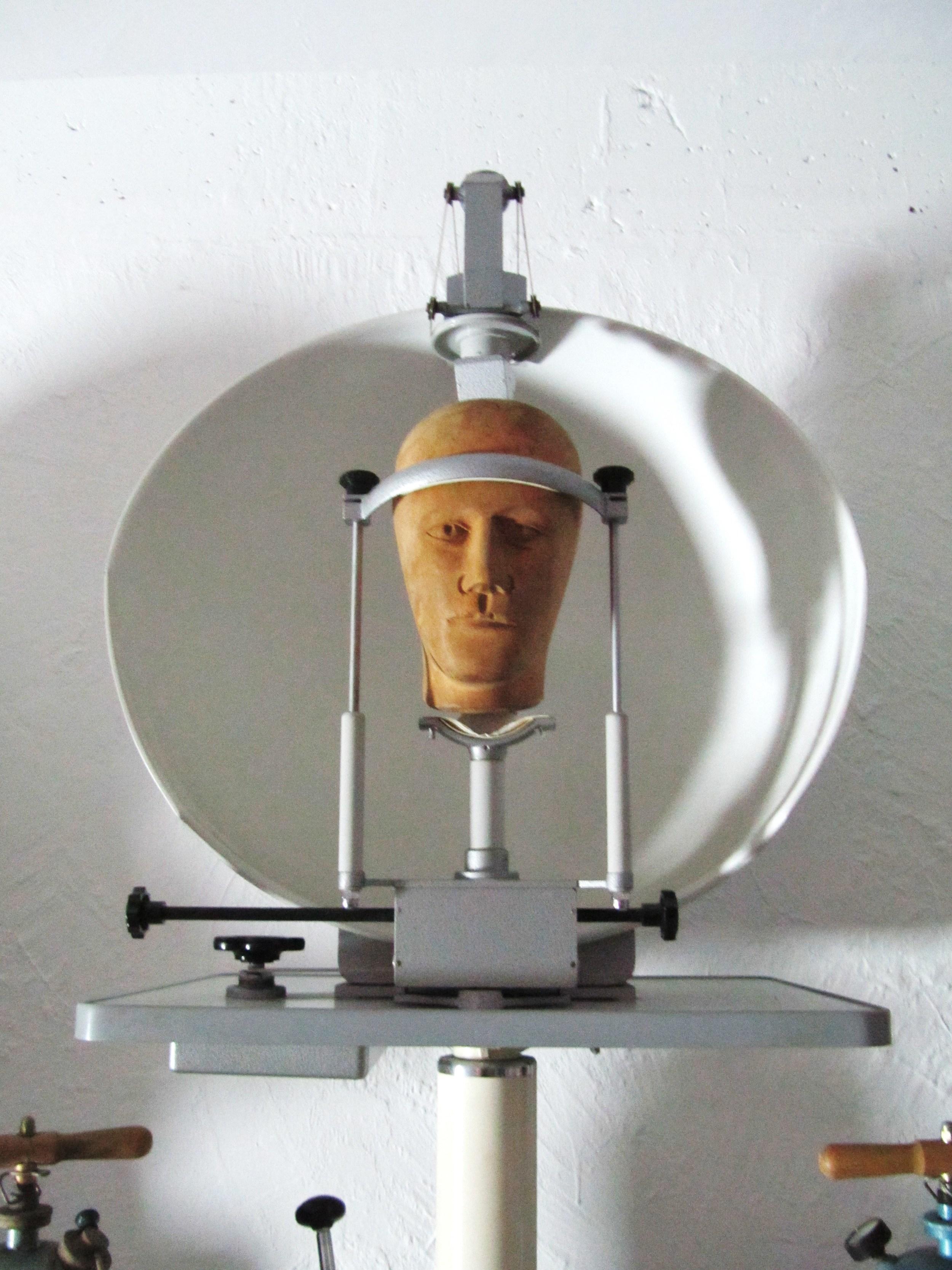 Designpanoptikum - surreales Museum für industrielle Objekte head in dish.JPG