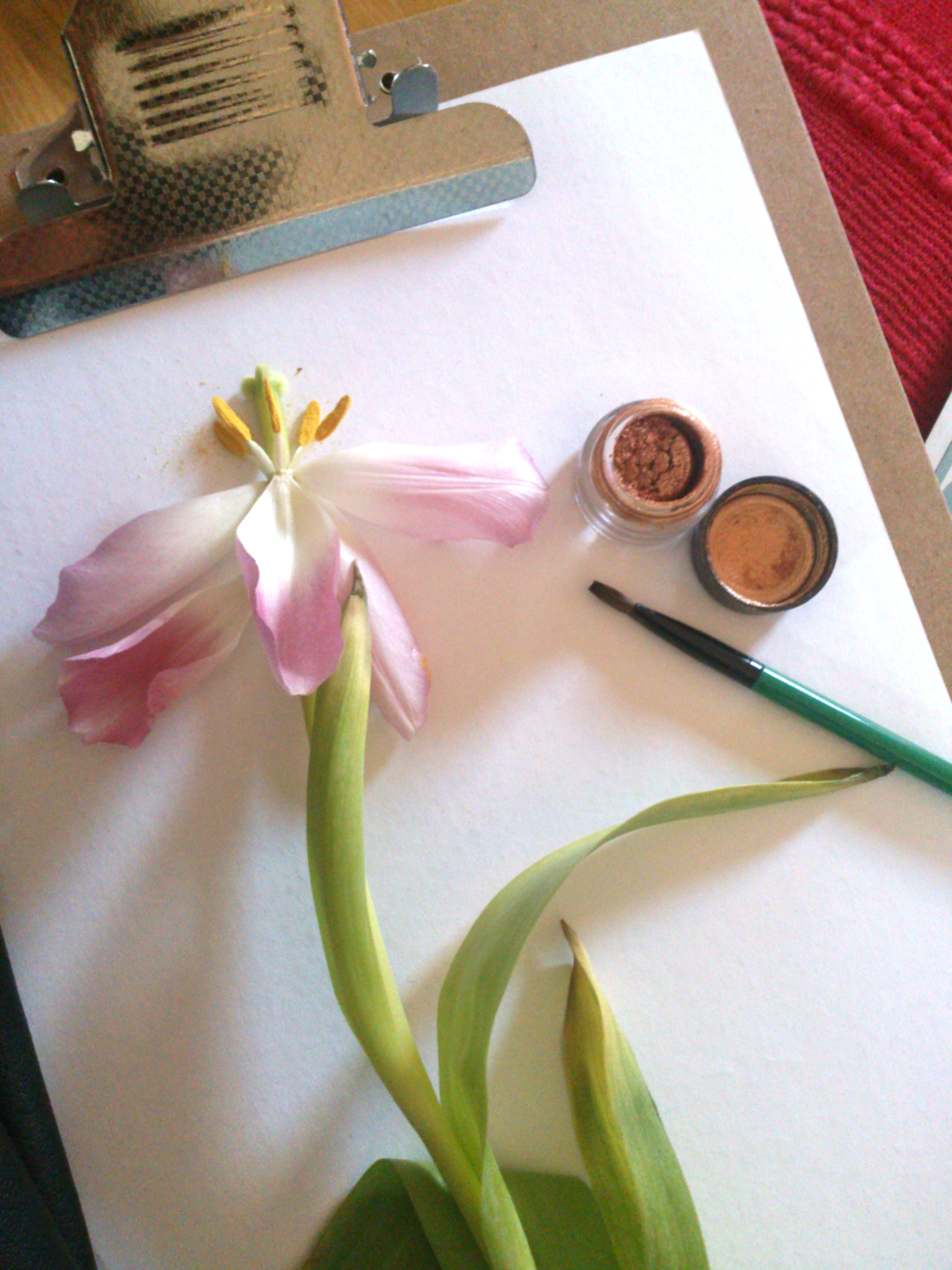 Using make up brushes, rather than paint brushes to fill in colour using strong loose pigments.