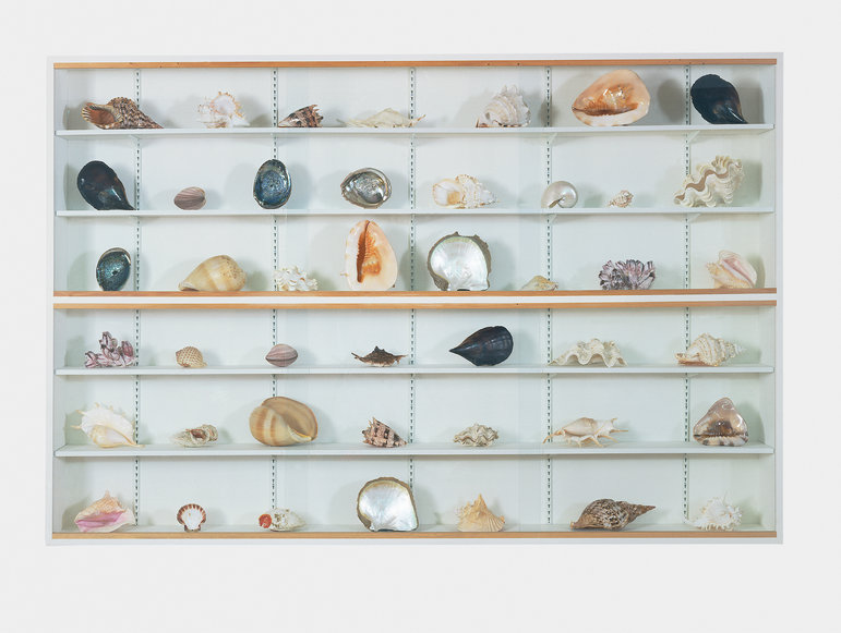 """Damien Hirst,  """"Forms Without Life""""  1991"""