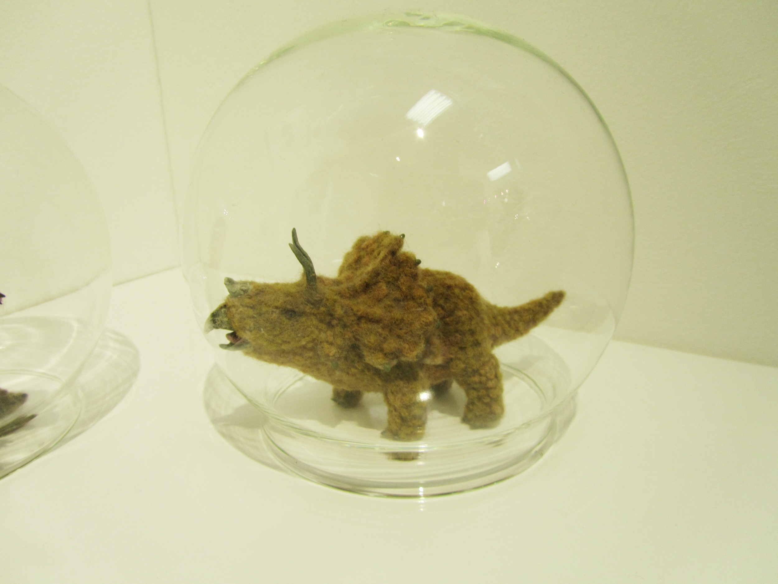 This little fellow looks preserved in a pre-historic environment as your own pet dinky dino in a bubble.