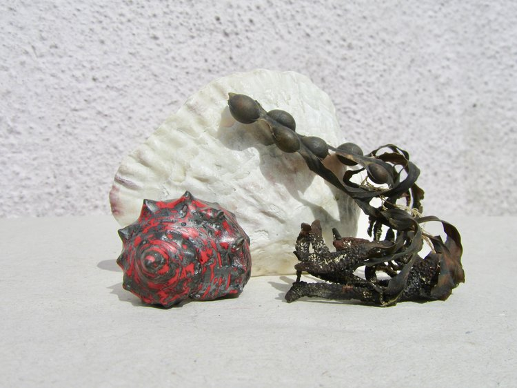 strawberry topshell - resin & silver ring