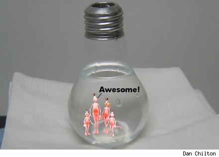 sea monkey bulb-pic.jpg