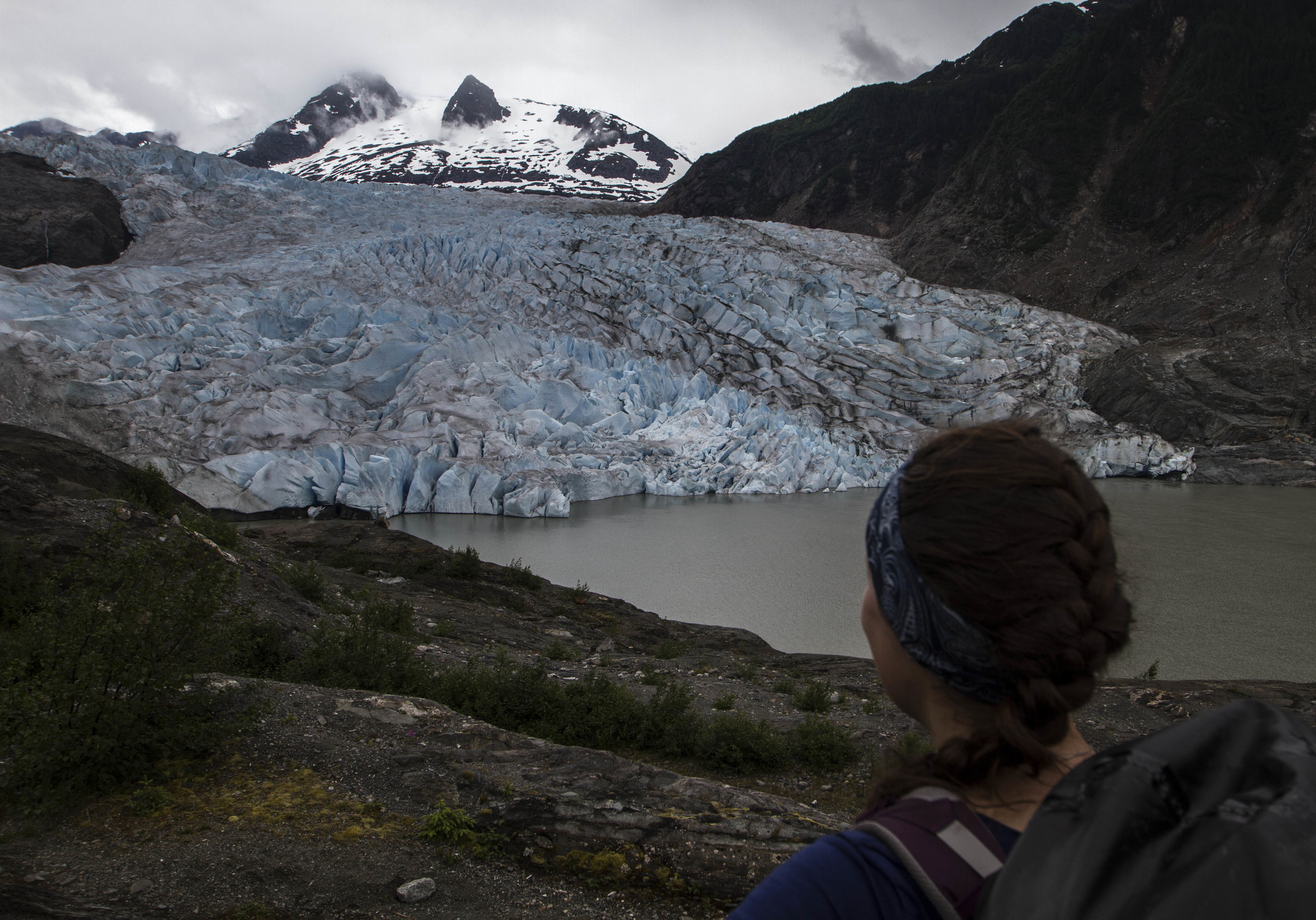 A view of the terminus of Mendenhall Glacier.  Photo:  Adam Taylor