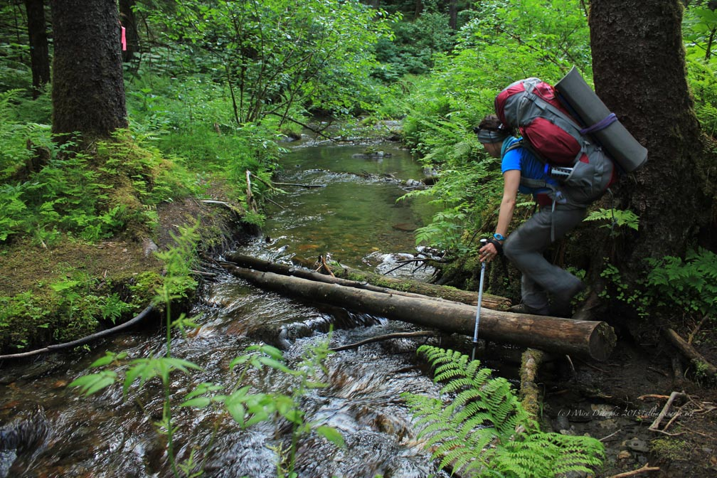 The trail wasn't a stream, but we still had a number of stream crossings to challenge us. Photo: M. Dutschke