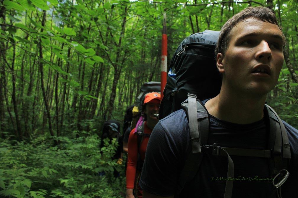 Hiking through the dense understory of Lemon Creek Valley. Photo: M. Dutschke