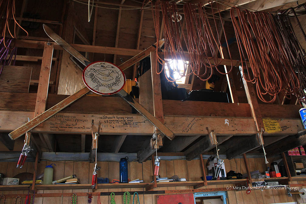 Climbing ropes hanging to dry in the cookshack at Camp 17 on the Juneau Icefield.  Photo:  Mira Dutschke