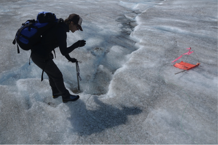 Jamie Bradshaw photo documents one of the ablation-measurement sites on Gilkely Glacier.  As the glacier surface melts, more wire (at Jamie's feet) is exposed.  Photo by Jeffrey Kavanaugh.