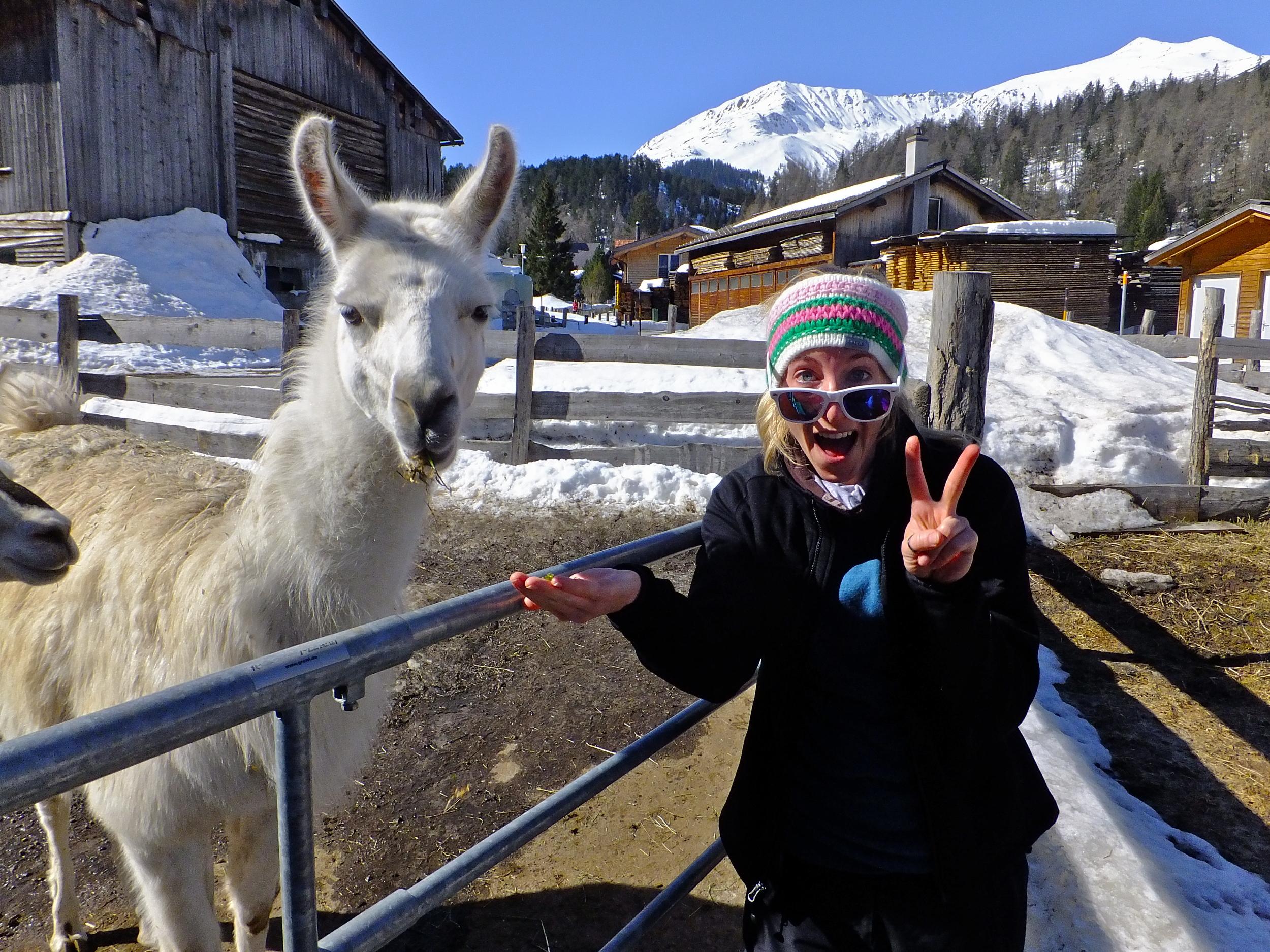 Saskia's friend is jealous of her icefield adventures!