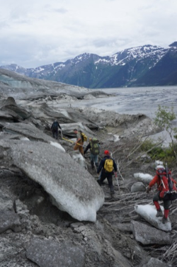 Walking on the edge of the glacier overriding alder trees