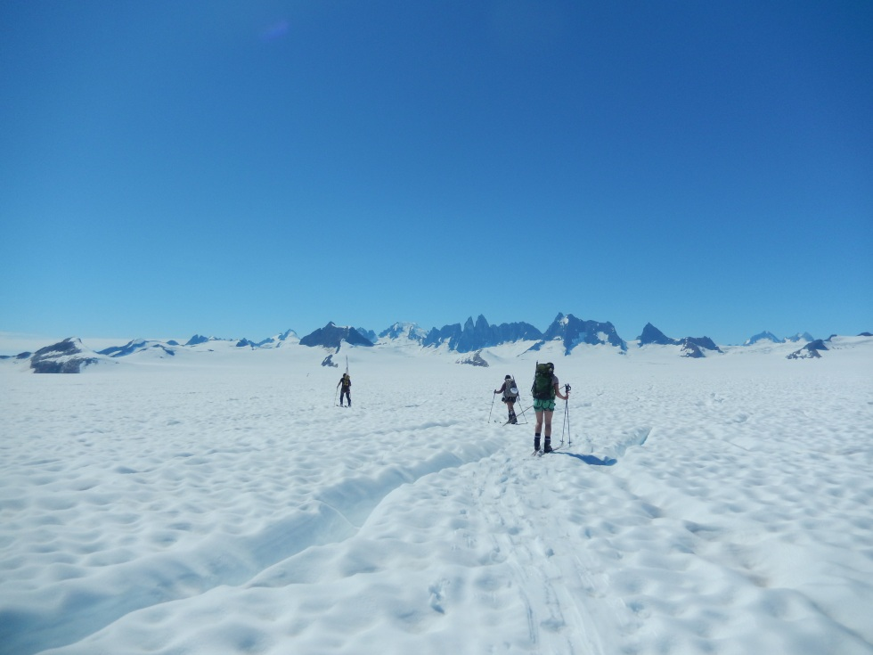 Students Molly Peek and Shawnee Reynoso and faculty member Chris McNeil ski through thinly exposed crevasses on Taku Glacier below Camp 10 on a sunny day. Photo: Kate Bollen