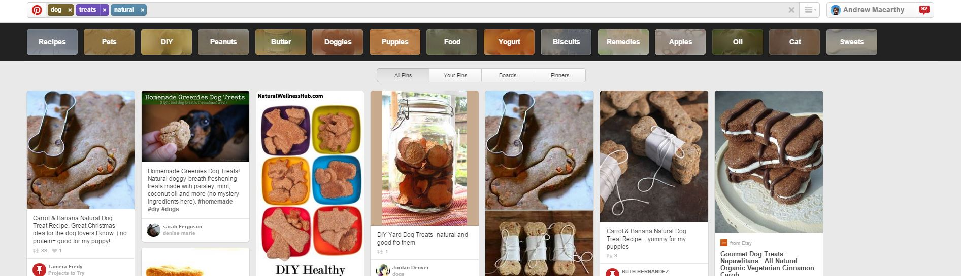 pinterest-guided-search-for-business-4.JPG