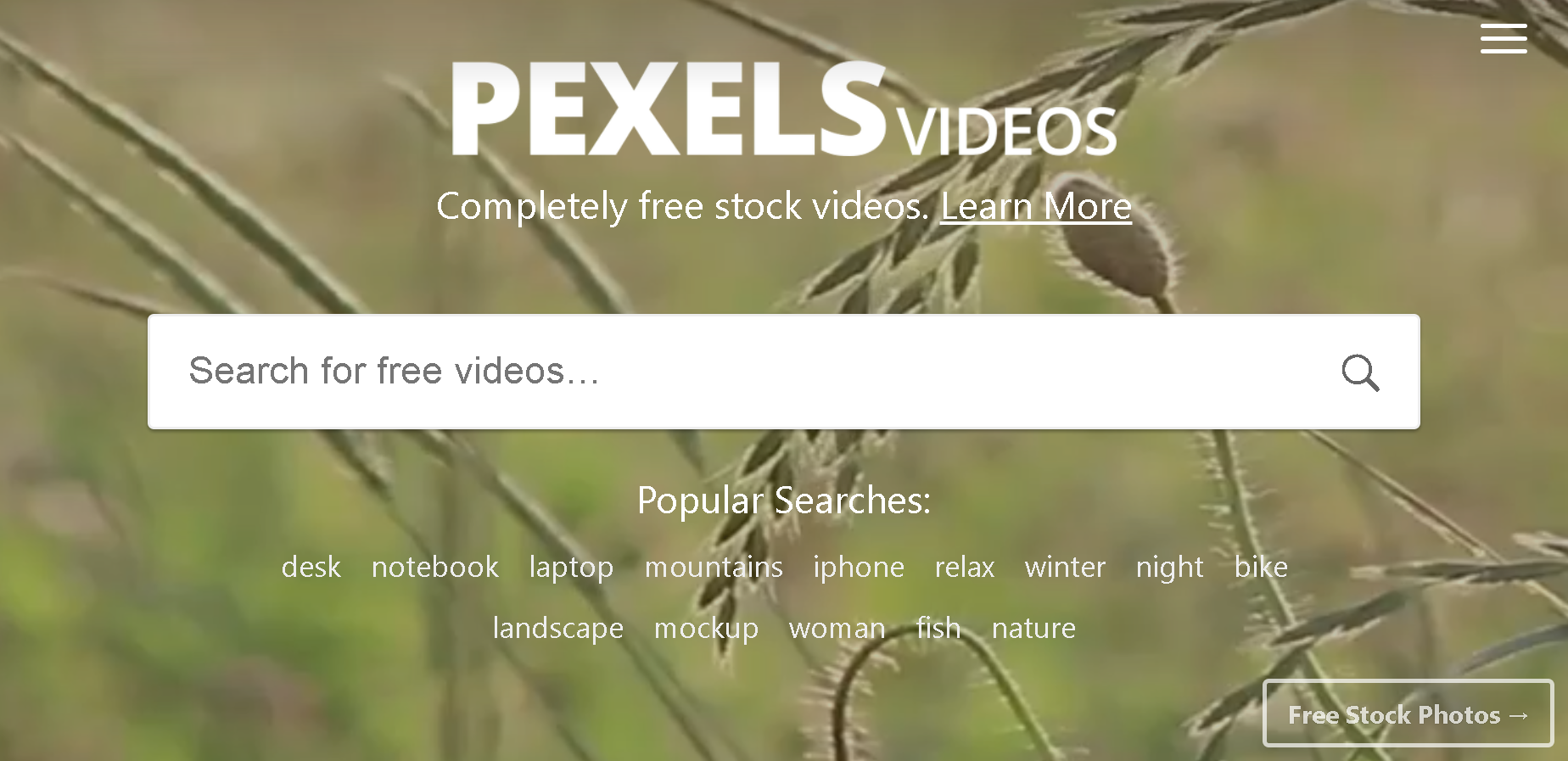 free-stock-video-creative-commons-pexels.PNG