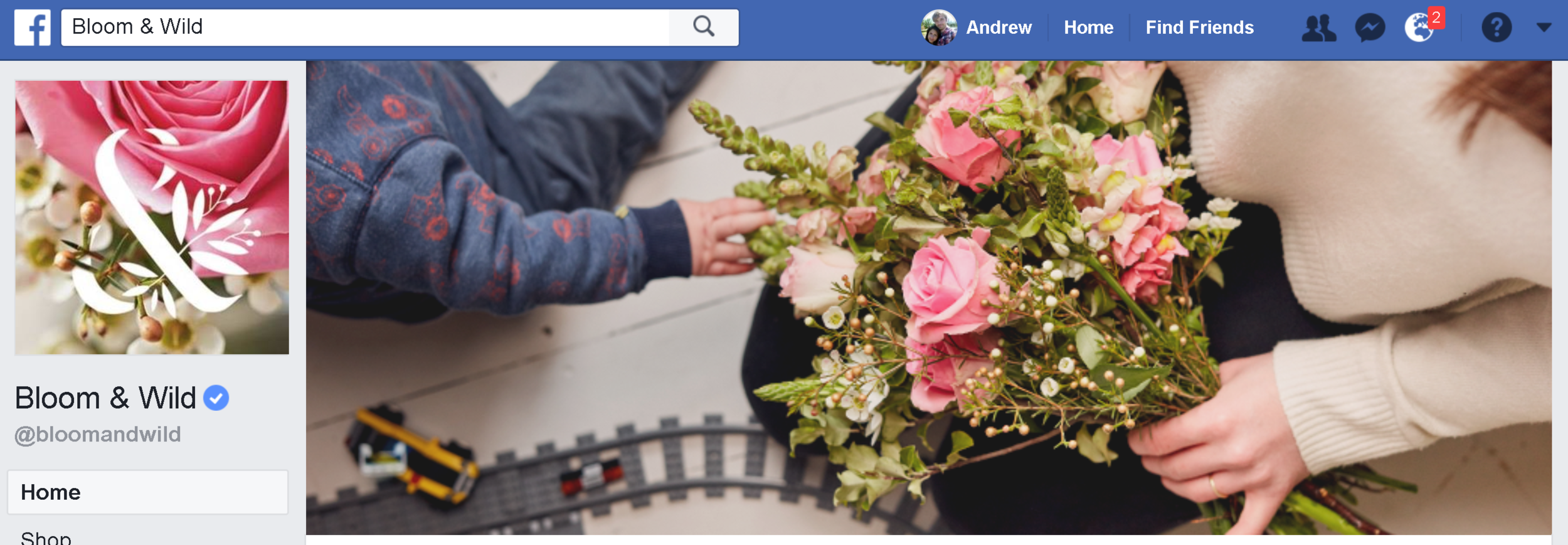 bloom-wild-facebook-cover.PNG