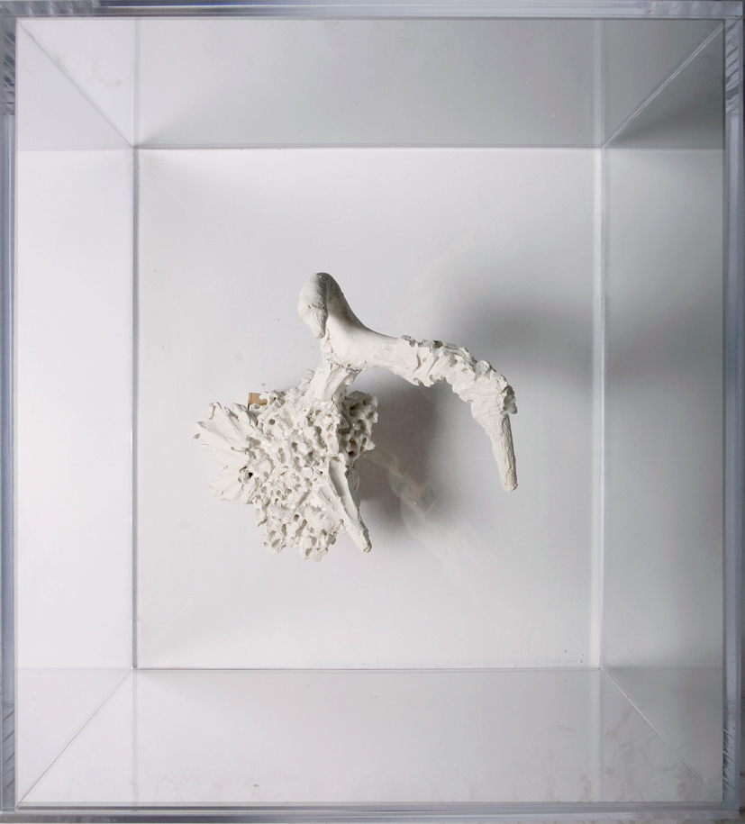 """Schema #3"" 2011  Plaster and Vandalism In Plexiglas Box (17.5x13.5x19.5"")"