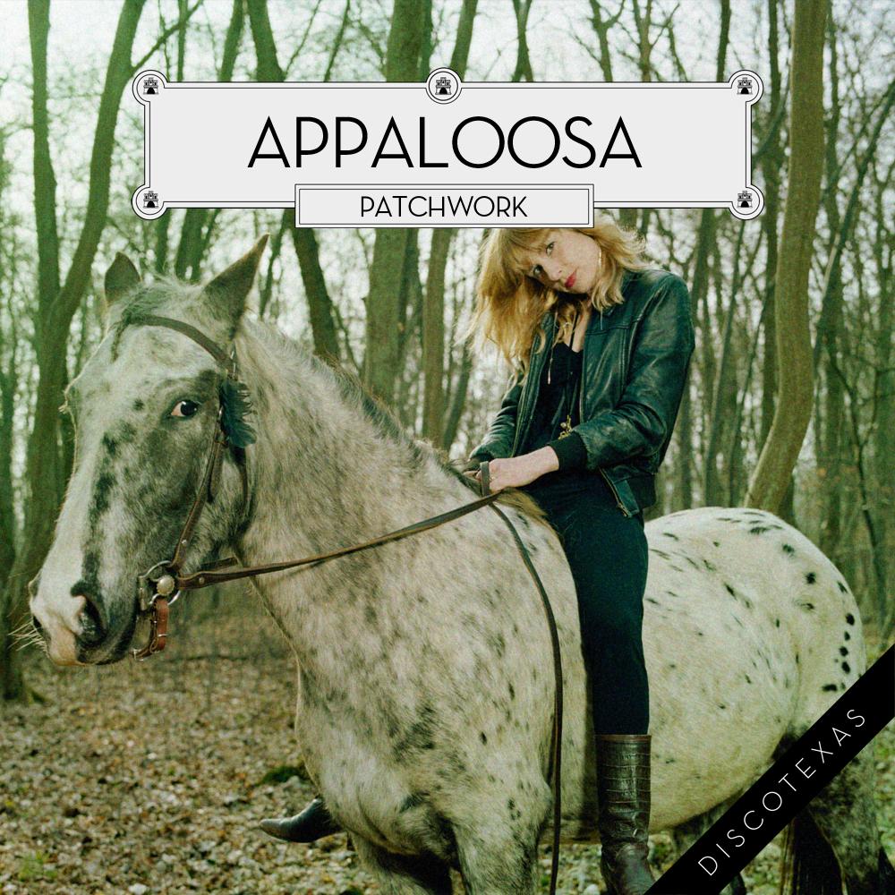 DT017: Appaloosa - Patchwork