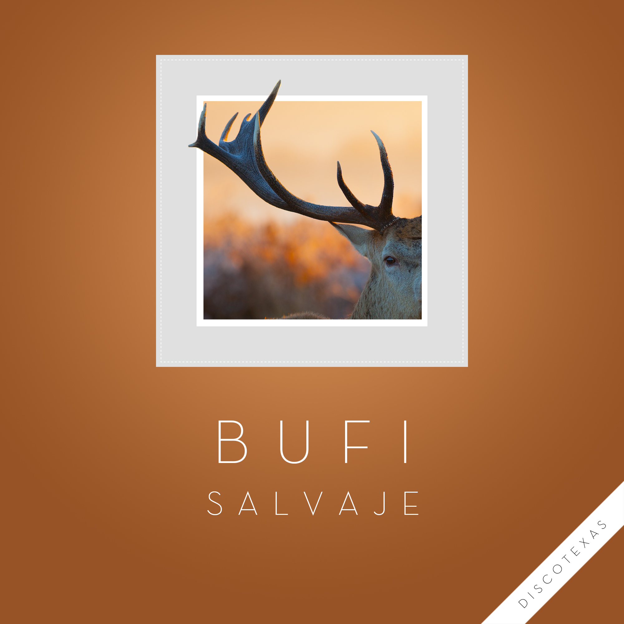 DT032: Bufi - Salvaje