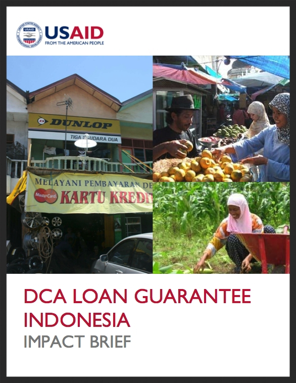 Indonesia Impact Brief