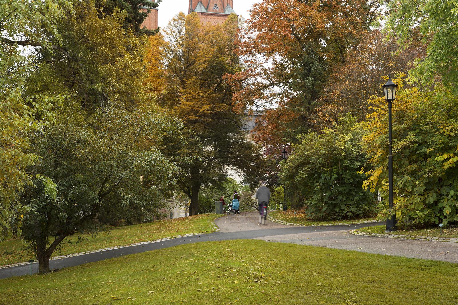 7_Uppsala_engelska_parken_före.jpg