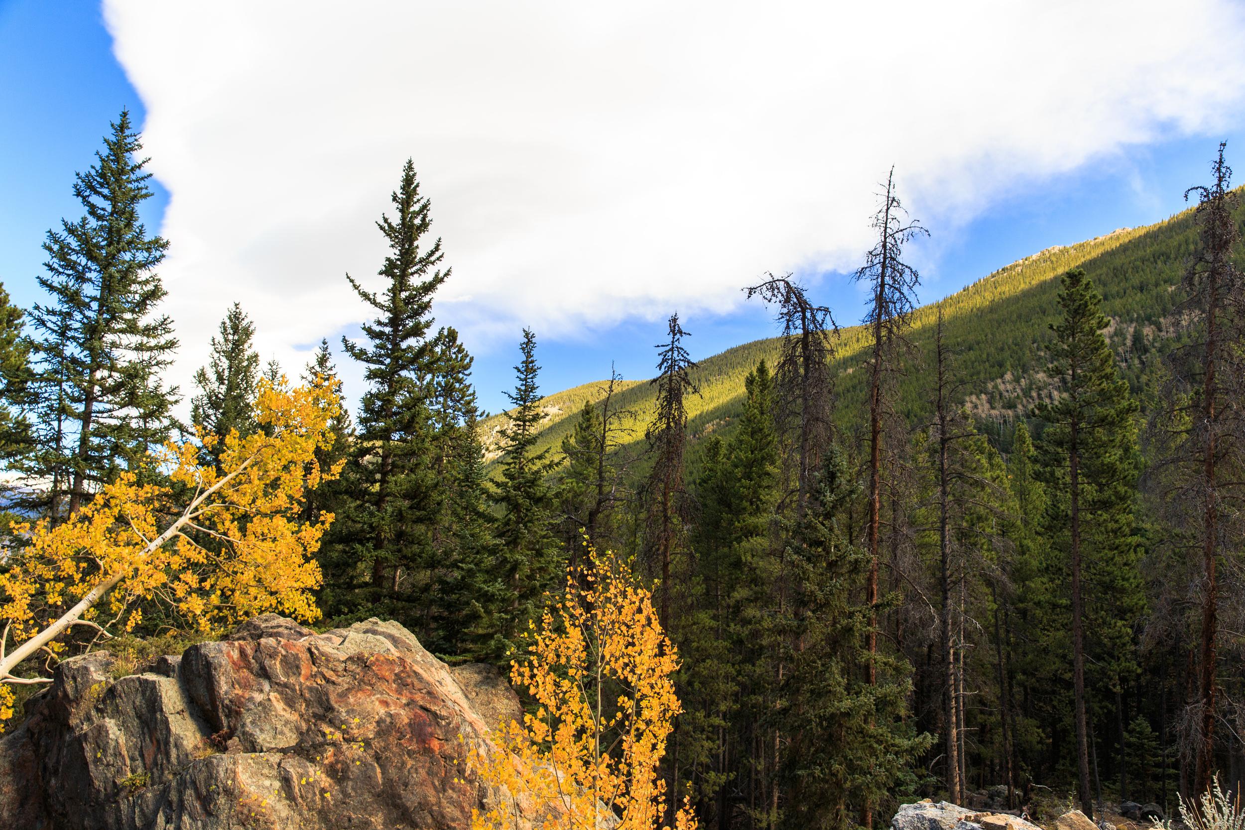 Colorado-0383.jpg