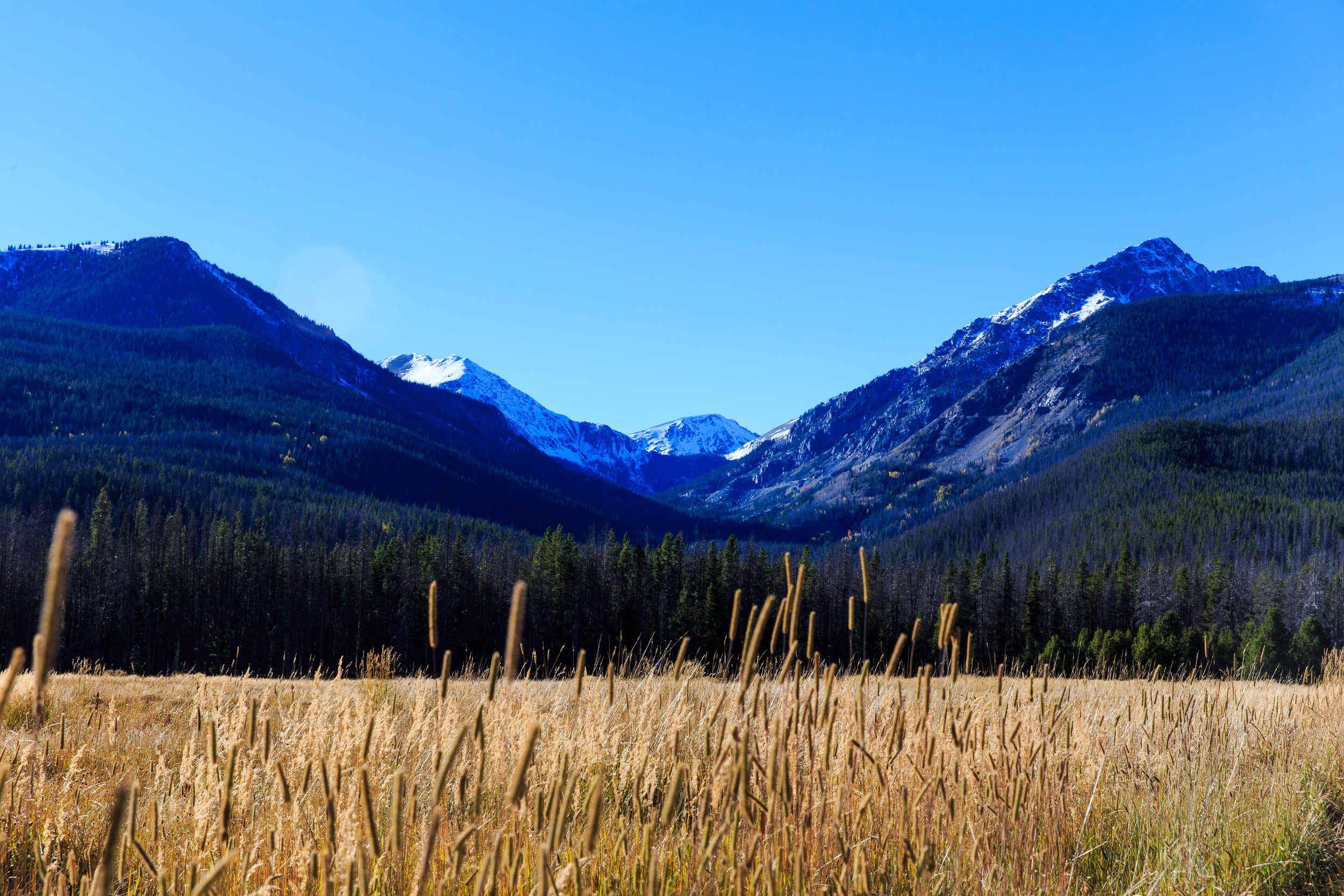 Colorado-0511.jpg
