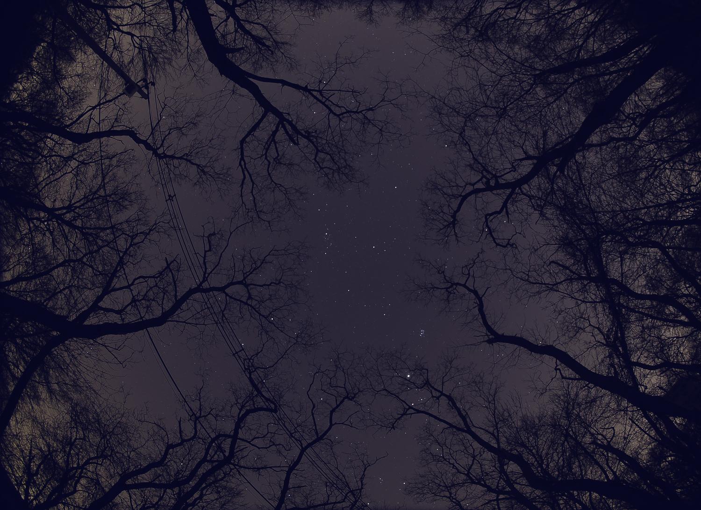 sky_bg.jpg