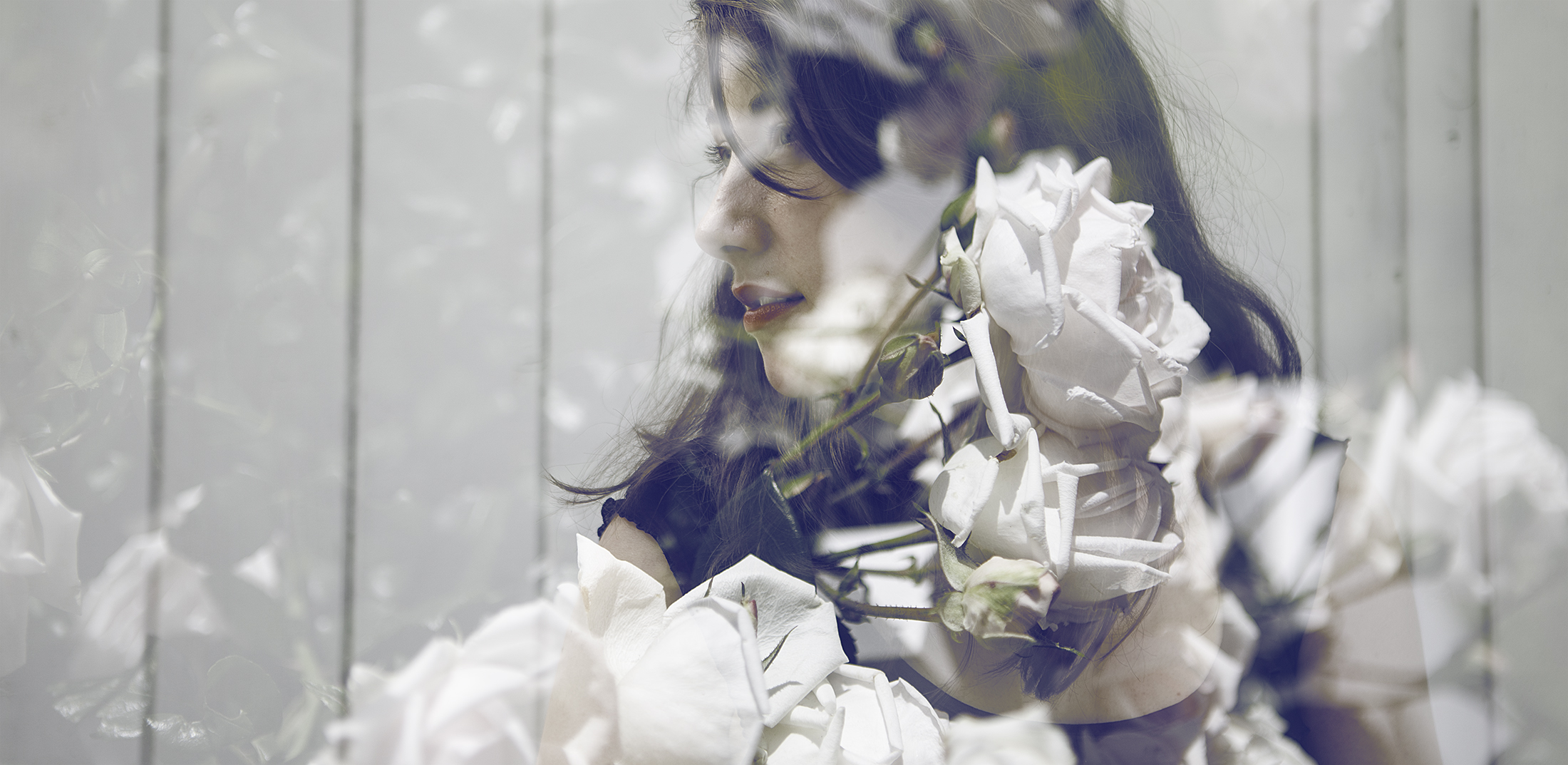 That fantastic moment when you figure out your camera can do proper double exposures, and then all you can find are white roses.