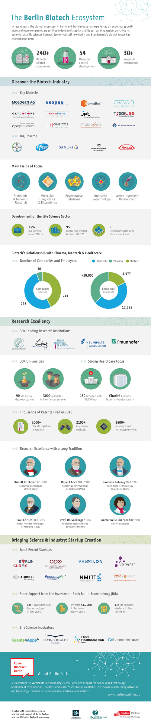 Infographic+Labiotech.eu_Version7_preview-02.png