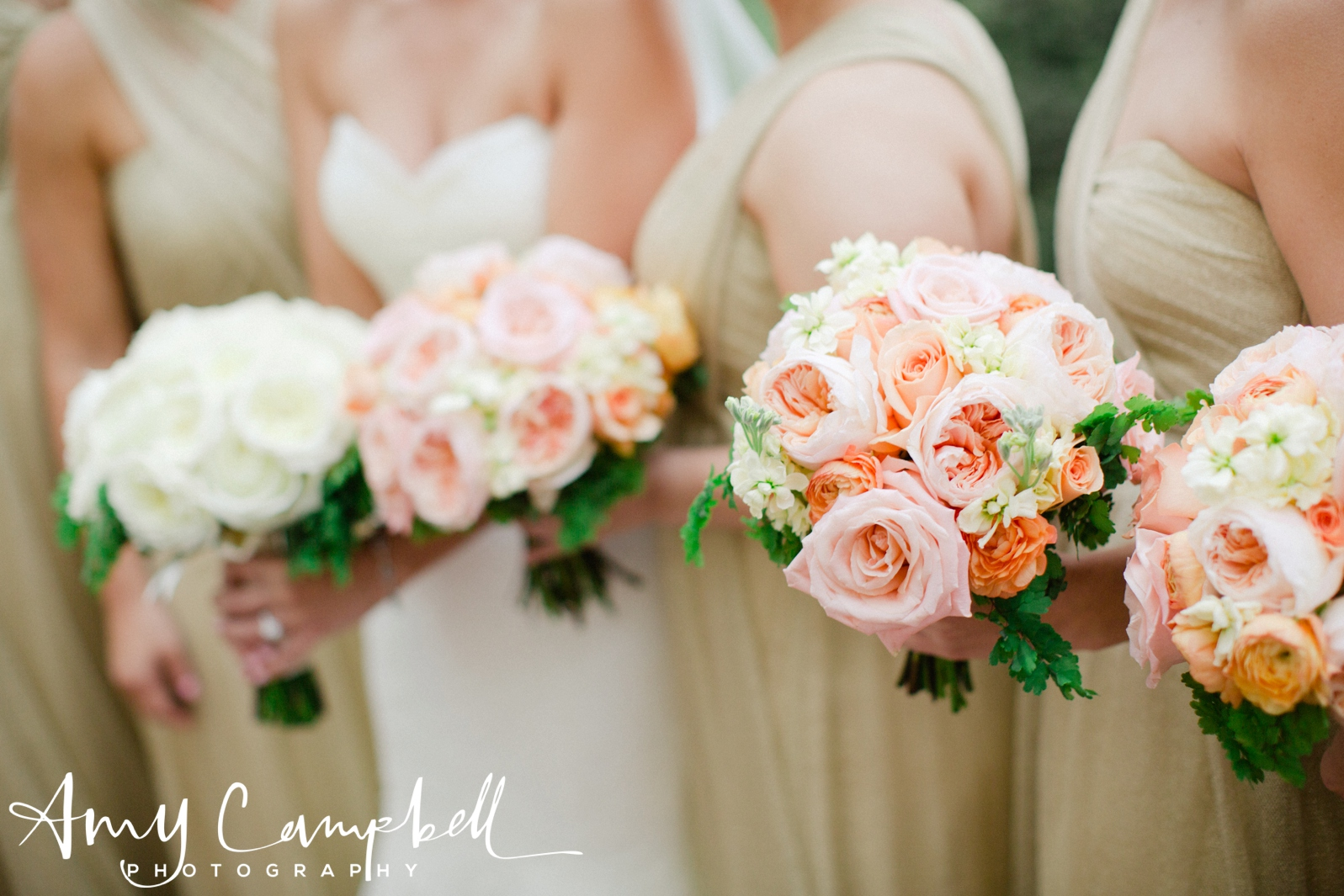 chelseamike_wedss_pics_amycampbellphotography_026.jpg