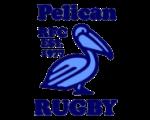 pelican rfc.png