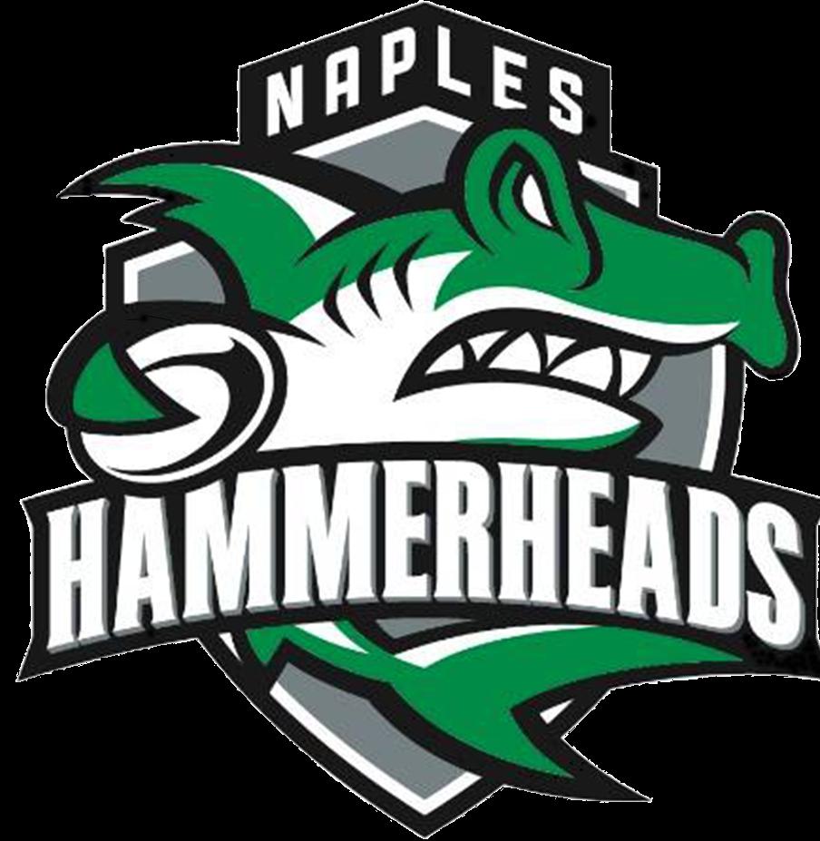 Naples Logo.png