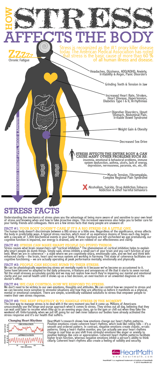 how-stress-effects-the-body | infographics | infographics.png