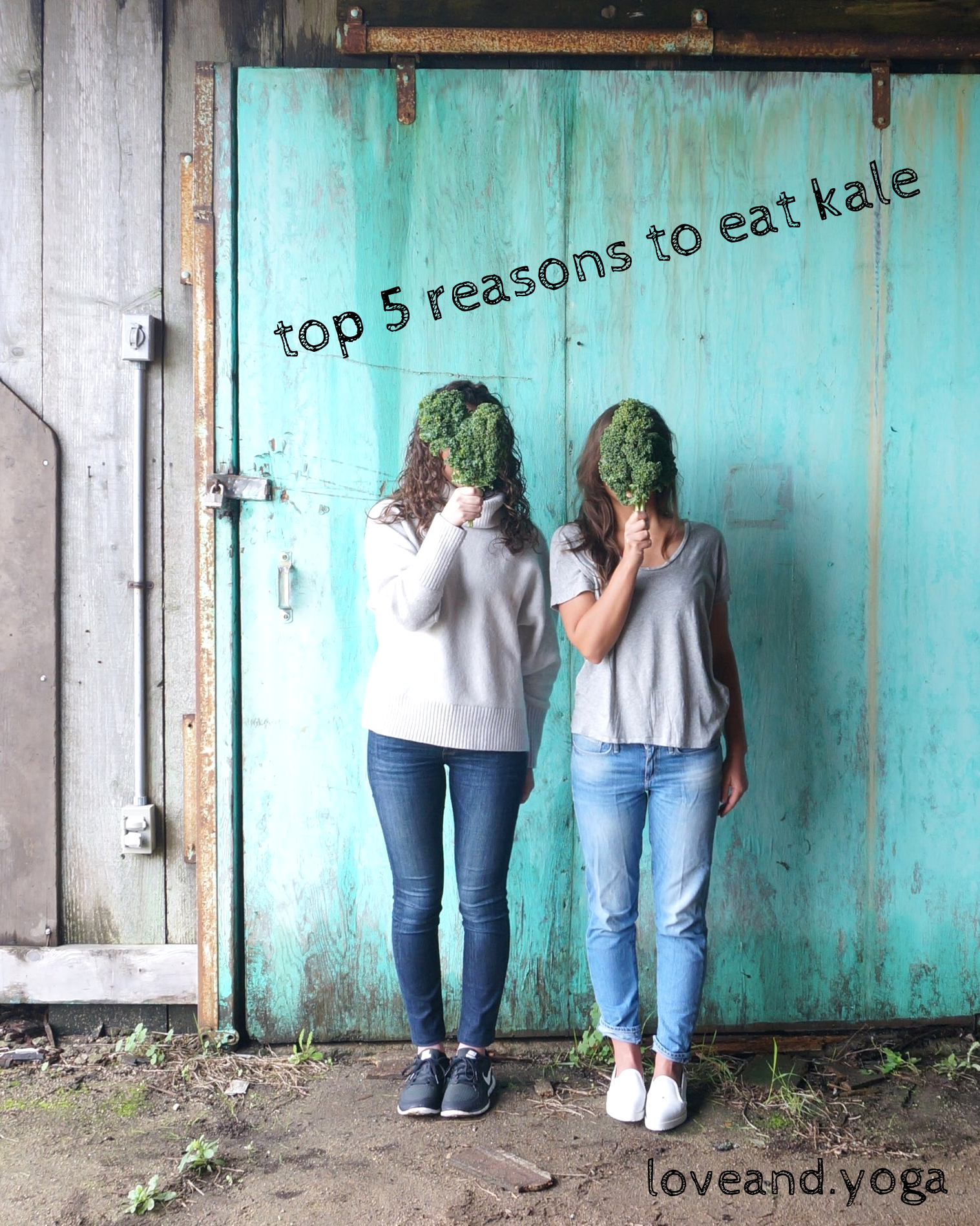 top 5 reasons to eat kale