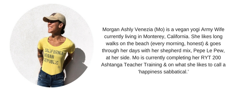 Morgan Venezia