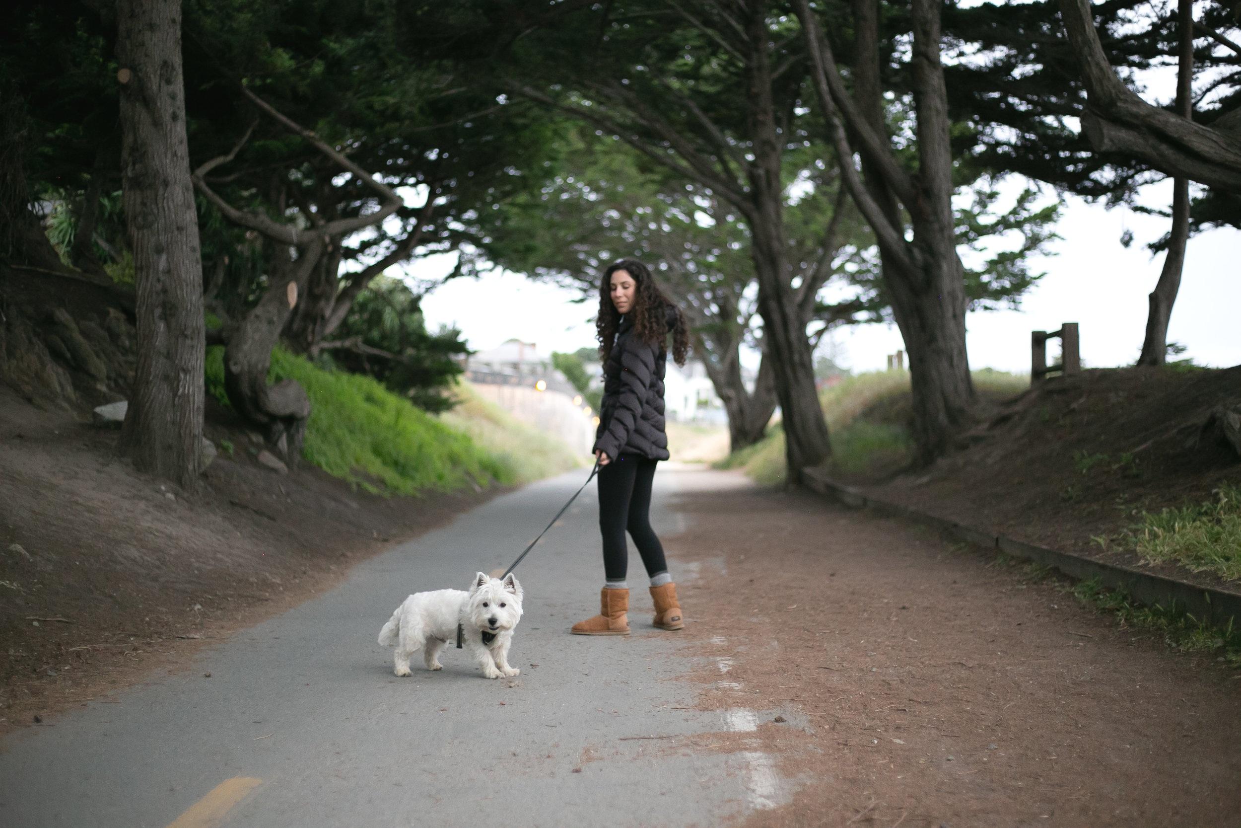 How to take a walk