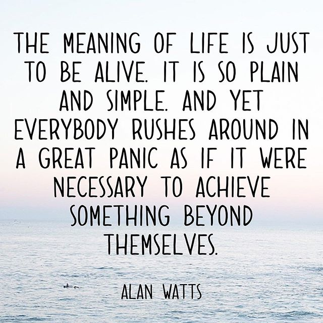 Often, I have to remind myself of this. We often place so much pressure on ourselves to achieve and create that we forget to enjoy life. The meaning of life is just to be alive. Happy Weekend! ✌🏼♥️ • •