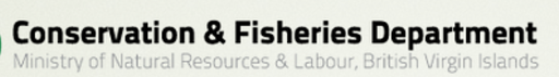 Image Courtesy of The Conservation and Fisheries Department under Fair Use