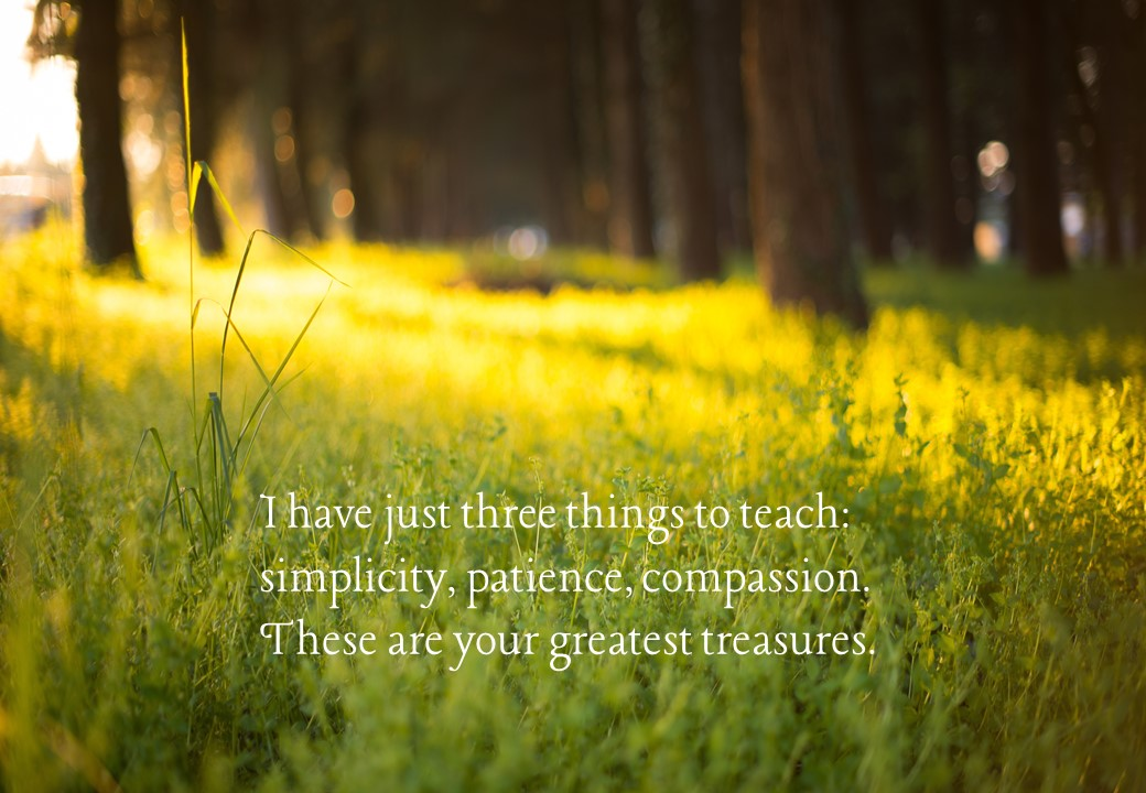 I have just three things to teach: simplicity, patience, compassion. These are your greatest treasures. Lao Tzu. Circle of Daydreams. www.circleofdaydreams.com