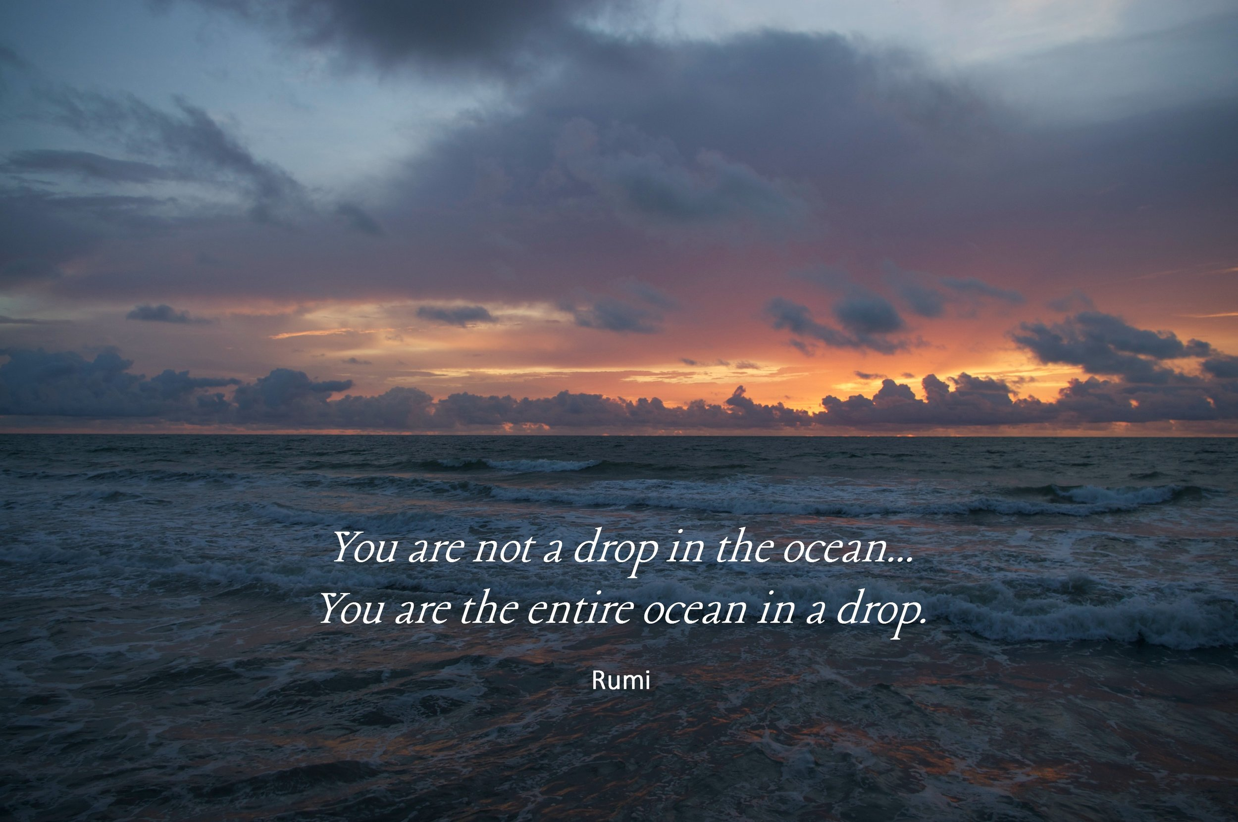 You are not a drop in the ocean... you are the entire ocean in a drop. Rumi. Circle of Daydreams. www.circleofdaydreams.com