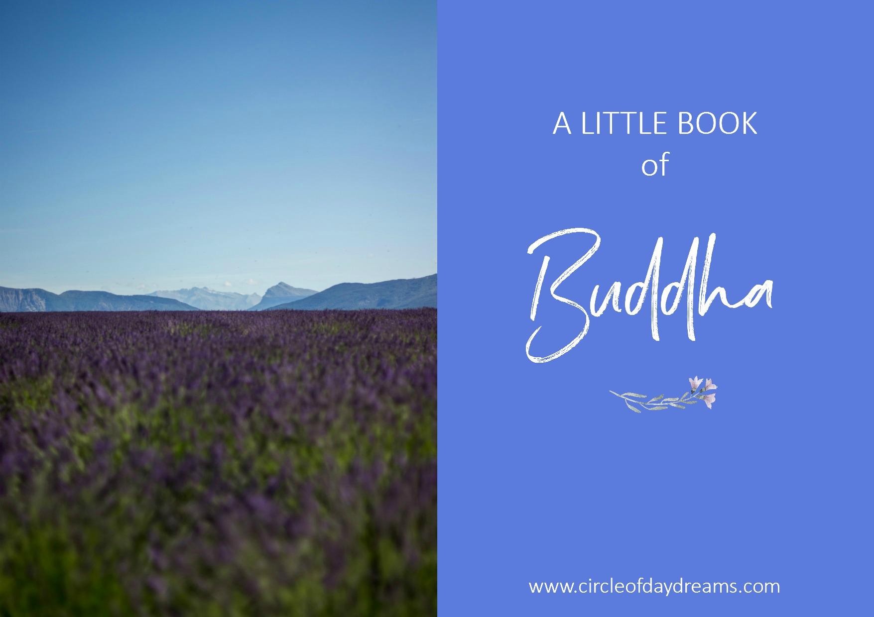 A Little Book Of Buddha