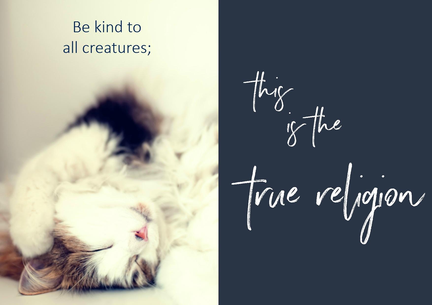 True Religion.jpg