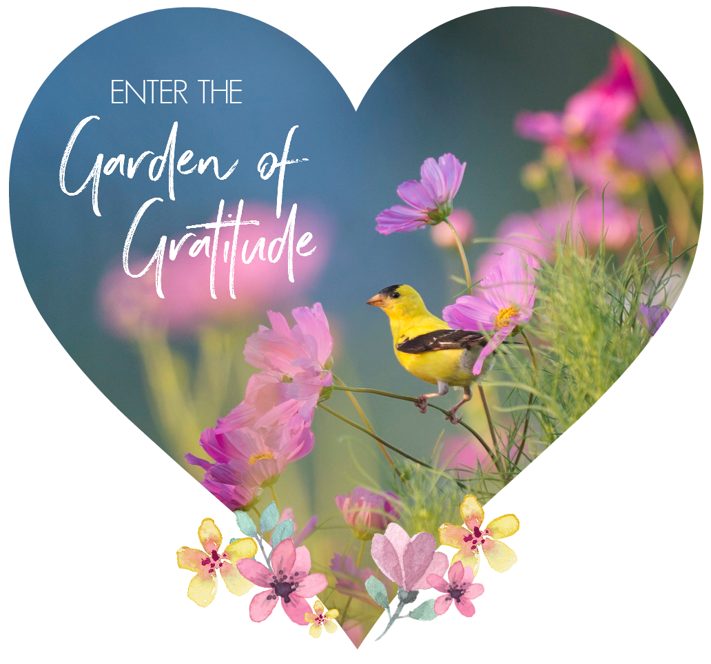 Enter the Garden of Gratitude. Circle of Daydreams. www.circleofdaydreams.com