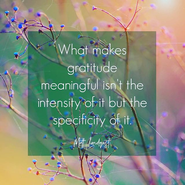 Gratitude is such an important part of my day to day life. Making it deliberate, and specific has reaped huge rewards for my peace of mind and love for life.  #gratitudejournal #gratitudedaily #momentsofgratitude #magicmonday #magicmondays #gratitudethoughts #gratitudequotes #gratitudequest #begrateful #givethanks #givegratitude #gratitudeinspiration