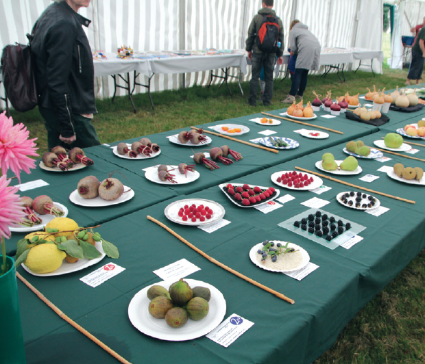 Cuckfield Village Show moves to Baptist Church for 2017