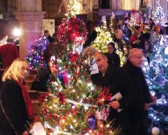 cuckfield-christmas-tree.png