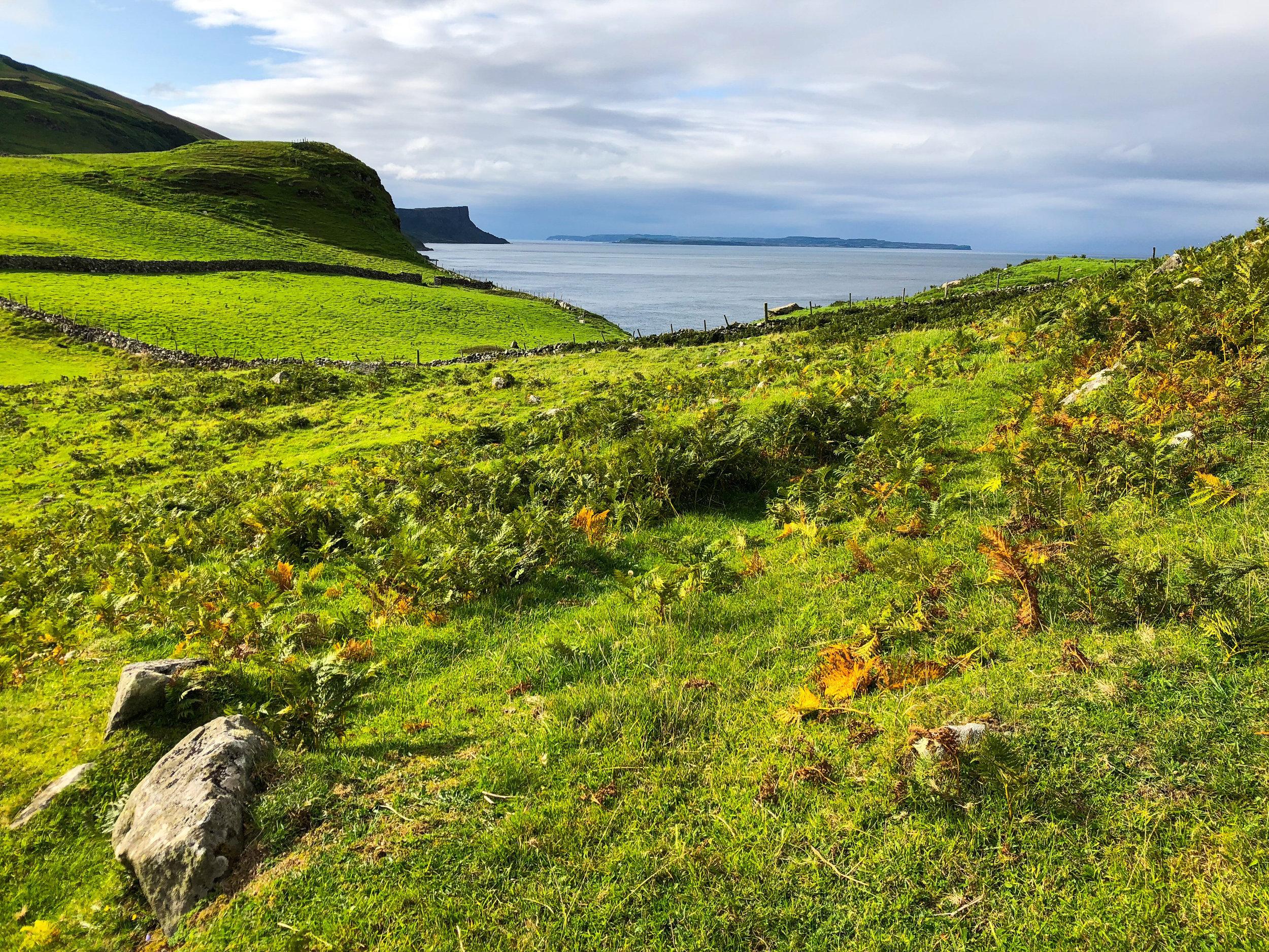 My family's roots run deep along Northern Ireland's Antrim Coast.