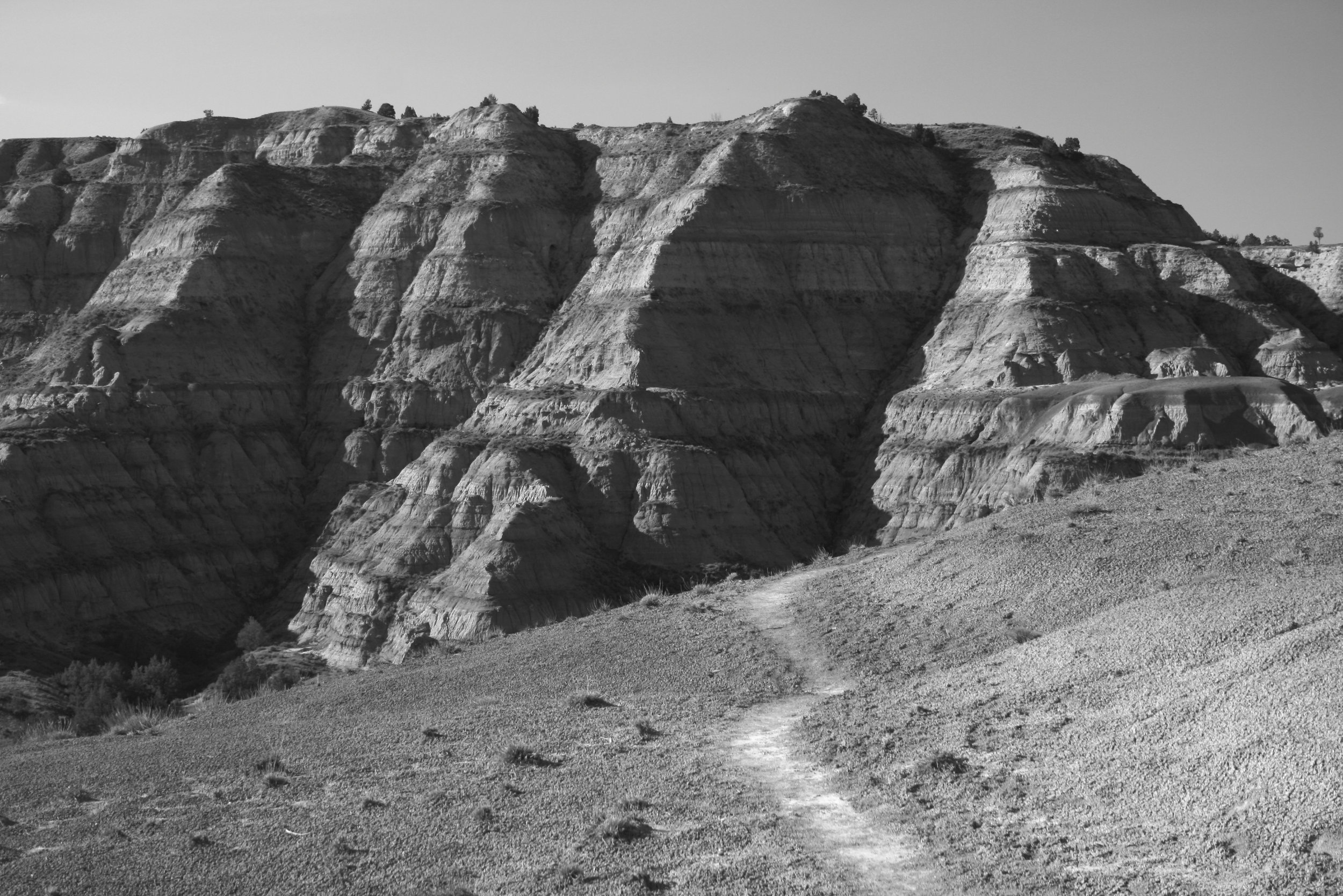 Caprock Coulee