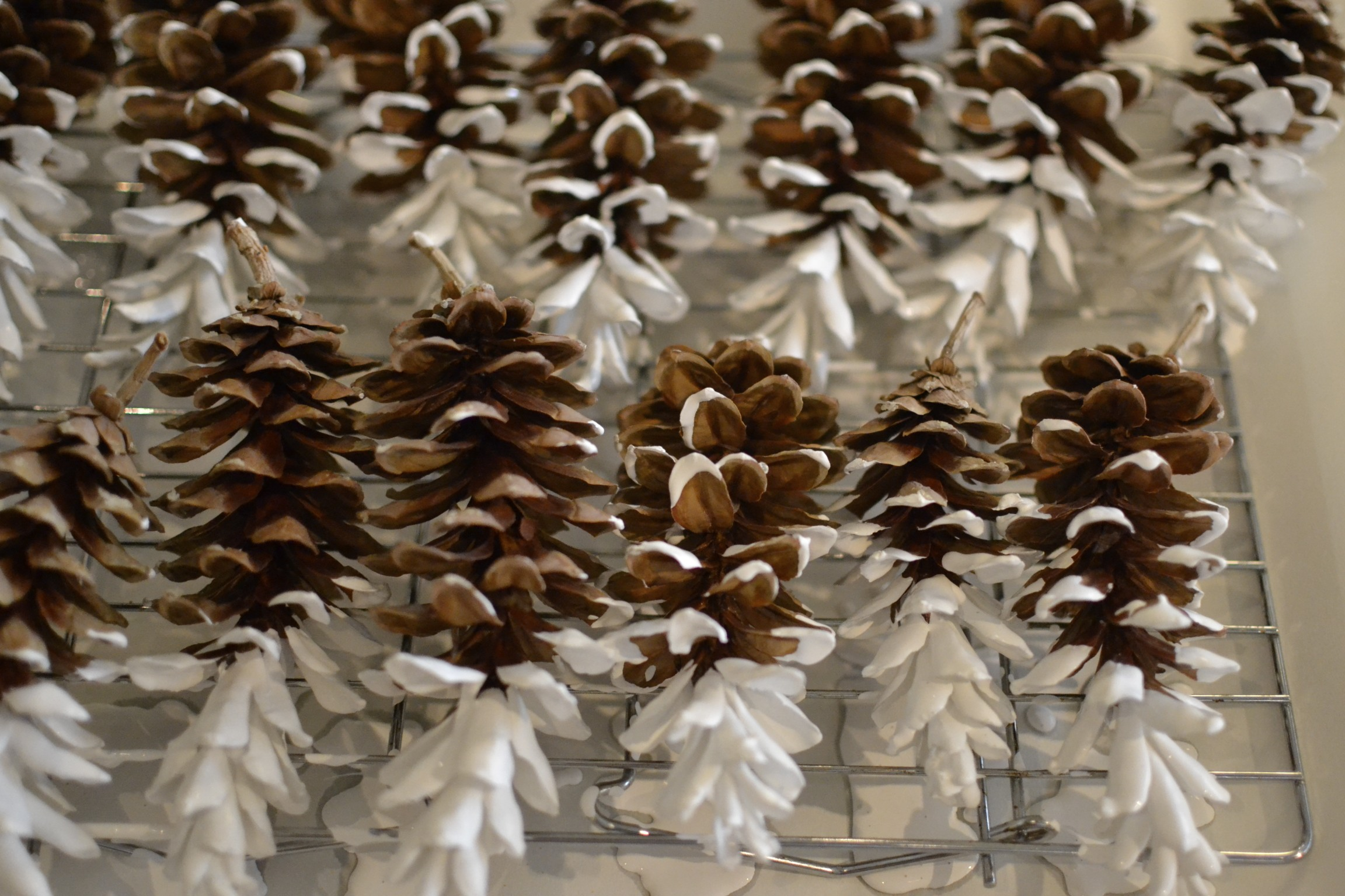 lay each pine cone on your cookie rack to partially dry. you will want the paint to become just tacky to the touch. if you sprinkle the glitter on the pine cones while still really wet, the majority of glitter will drip off with the excess paint.