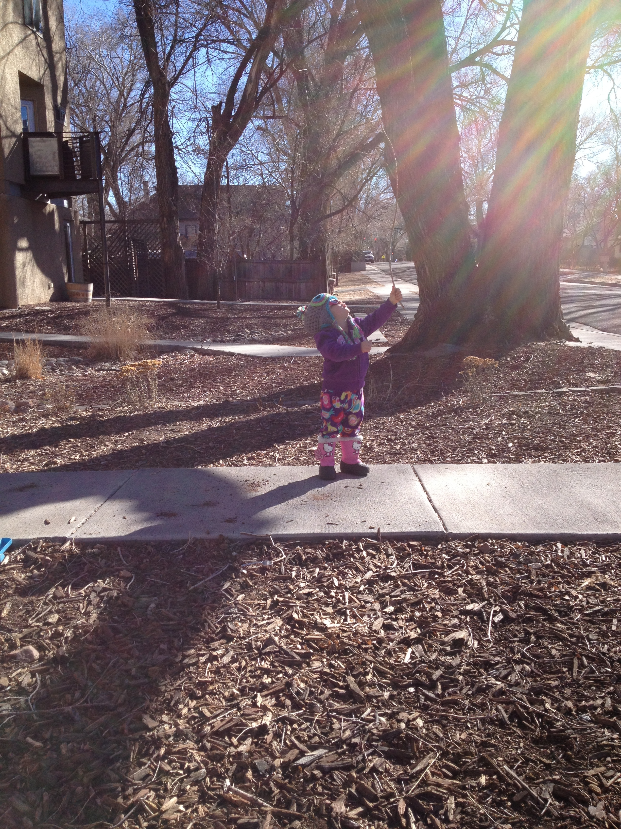 """first, she told me she was reaching for the birds with her stick. then we saw a squirrel and she told me that the """"squirrels were waiting for the aqua bus to go buy new clothes"""". we do have lots of squirrels and our city busses frequently drive by the house. 10 minutes later the aqua colored one drove by!"""